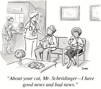 cat-paradox